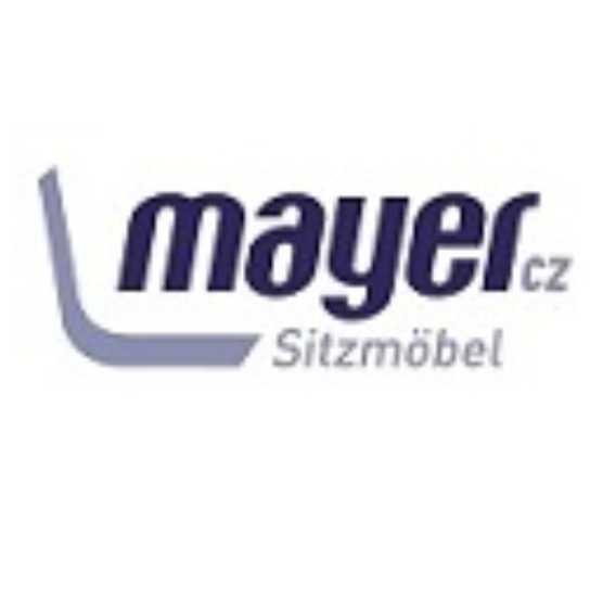 Mayer-logotipas-monoidėja