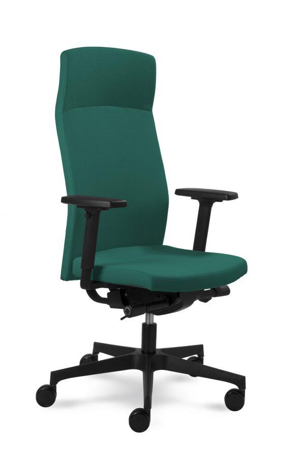 Mayer-vadovo-kėdė-darbu-ergonominė-biuro-darbo-mediko-kėdė